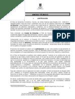 Anexo Version Final 27-01-11[1]