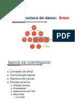 ARBOLES 2013-Estructura de datos.pptx