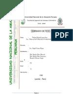 55413026 Tesis Sobre El Trabajo Infantil en Iquitos Por Jorge Rodrigo Ramirez FISI UNAP