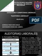 Auditor