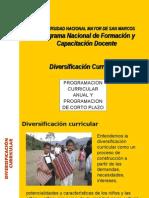Programación y Diversificacion2010