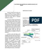 Características o Factores Que Controlan La Morfología de Los Andes (1)
