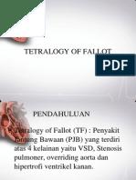 Tetralogy of Fallot - NN (PP)