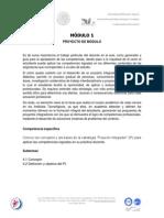 5 M-I  PROYECTO DE MÓDULO-2013.pdf
