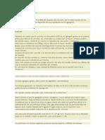 AGREGADOS DEL CONCRETO.docx