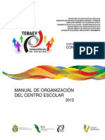 Manual Organizacion (1)