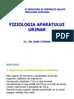 Fiziologia aparatului urinar