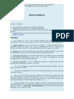 derecho-ambiental_ANTIGUO.doc