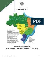 Brasile-Vademecum Per Gli Operatori Italiani