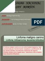 Linforreticular en Patologia II