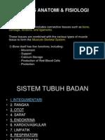 M2 DAN M3 Sistem Rangka