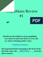 Amphibians Review 1