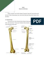 fraktur femur