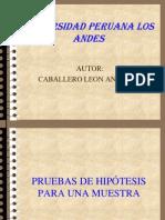Pruebas de Hiptesis Para Una Muestra 1216962426427373 9