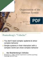 Organization Neuro Science