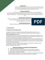 Las Organizaciones - Tipos, Características y Su Importancia