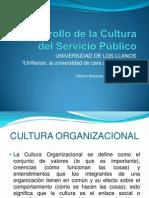 Desarrollo de La Cultura Del Servicio Público PAGINA CI