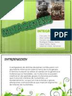 Exposicion de Mutagenesis