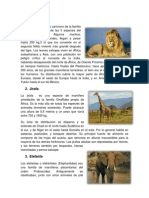 6 Animales y Planetas Exteriores e Interiores