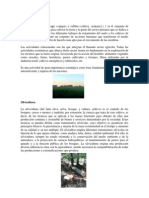 Agricultura y Silvicultura