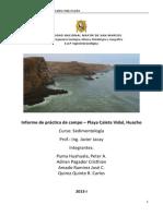 Informe Huacho