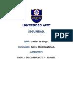 SEGURIDAD  - Analisis de Riesgos (Ensayo).docx