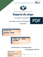 Rapport de Stage Amendis (Enregistré Automatiquement) 22