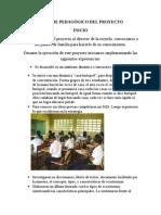 informe pedaggico del proyecto