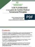 Plan Flexilbilidad Principios y Cambio Radical