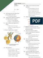 Gabarito do Estudo Dirigido -Sistema Diegestório e Respiratório