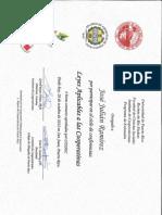 Certificado Seminarios Colegio Abogados 2012 - JJ Ramírez