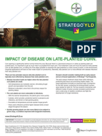 2013 Stratego® YLD Impact of Disease on Late-Planted Corn Tech Sheet