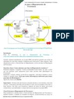 Check List Para o Mapeamento de Processos _ Inovação, Sustentabilidade e Tecnologia