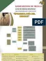 Epidemiologia Del Dengue2