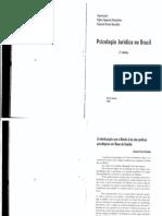 18.04.2010 -TEXTO - A INTERLOCUÇÃO COM O DIREITO À LUZ DAS PRÁTICAS PSICOLÓGICAS EM VARAS DE FAMÍLIA.pdf