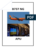 B_NG-APU