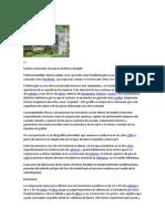 Fundición gris.docx