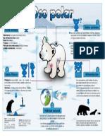 Infografia de Oso Polar