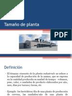 Tamaño de Planta (1)