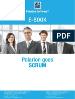 Polarion Goes Scrum