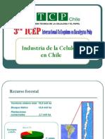 Celulosa 2