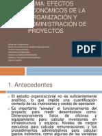Organizacic3b3n Del Proyecto