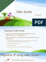 Sales Quota- all types of Quota