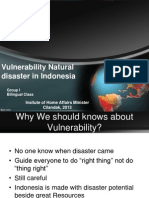 Vulnerabilities in Indonesia