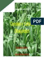 Intro Cereales 2012