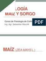 Maiz y Sorgo FC 2012