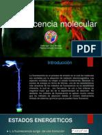 Fluorescencia Molecular