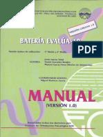 Manual E10 Completo