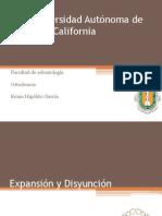 Expansion y Disyuncion