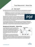 Fiscal Measurement Natural Gas FSG-WP-0012
